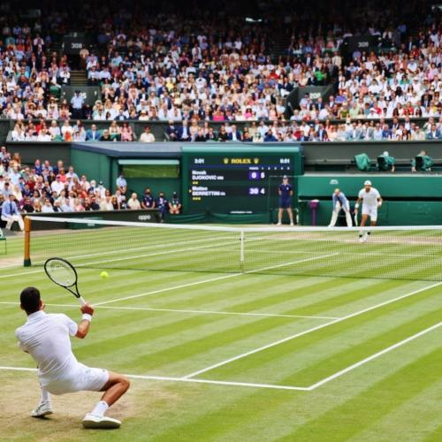 Djokovic: 'Nhà Vua' mới của Wimbledon